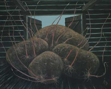 GERMINATED POTATOES V - Oil/Canvas (65x81) 1991