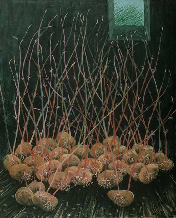 GERMINATED POTATOES - Oil/Canvas (81x65) 1991