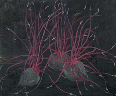 GERMINATED BEETS - Oil/Canvas (38x41) 1994