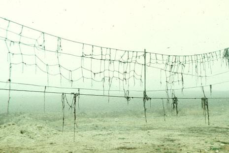 Ion Dumitriu - Gallery - Slides - Ilie Blejan 23