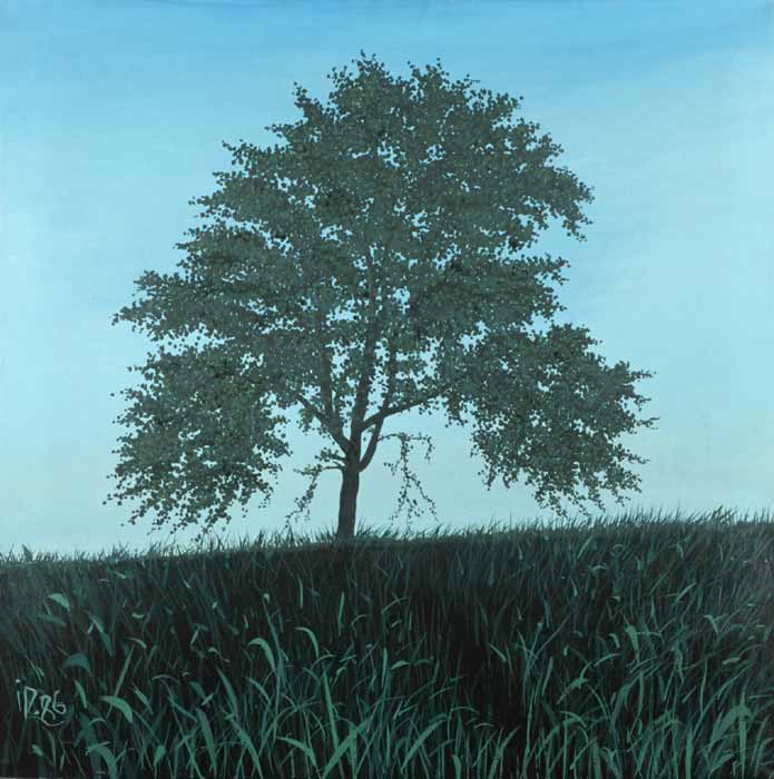 TREE - Oil / Canvas (81x81) 1986