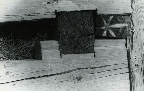 Ion Dumitriu - Galerie - Fotografii 11