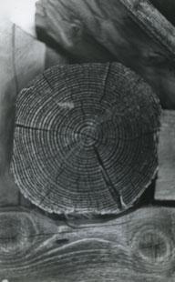 Ion Dumitriu - Galerie - Fotografii 13
