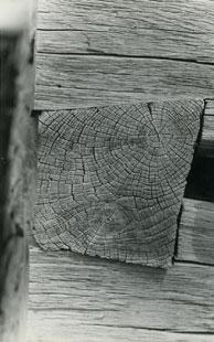 Ion Dumitriu - Galerie - Fotografii 17