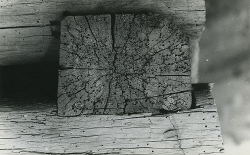 Ion Dumitriu - Galerie - Fotografii 18